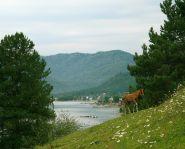 Voyage Russie, Altai - Lac Teletskoie