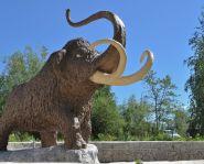 Le musée du mammouth