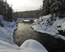 Voyage Carélie - La réserve de Kivatch