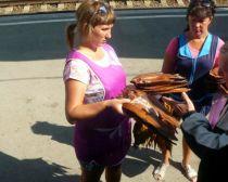 Transsibérien accompagné : vendeuse de poisson
