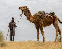 Voyage Ouzbékistan - Nourata - Balade en chameau