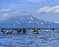 Kamtchatka - Lac Kouril