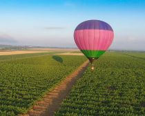 Voyage Autour de Krasnodar - Péninsule de Tamagne - Domaine viticole © Kuban-Vino