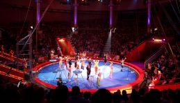 Grand Cirque de Moscou
