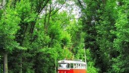 Visite autour de Saint-Pétersbourg - Tram 36