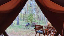 Camping autour de Moscou - Glamping région de Tver - Kamenetskie Kupeli