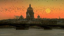 Panorama Saint-Pétersbourg