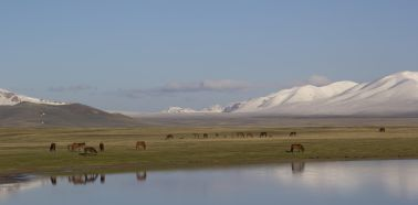 Voyage Kirghizistan - Lac Son-Kul