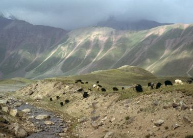 Voyage Kirghizistan - Montagnes