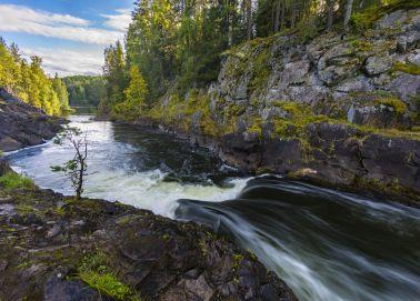 Voyage Russie, Carélie - Réserve de Kivatch