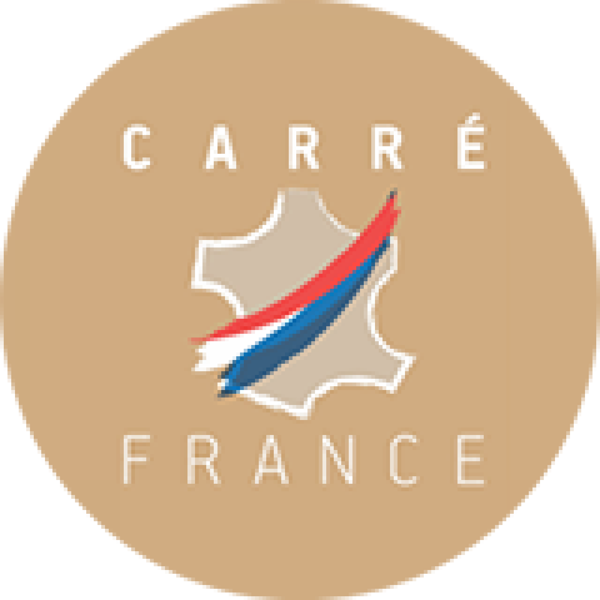 Logo Carré France